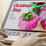 holiday web development